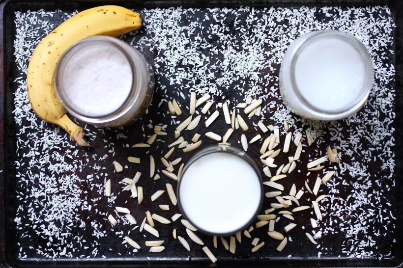 how to make plant-based milks